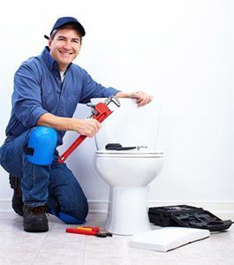 toilet repair greece ny