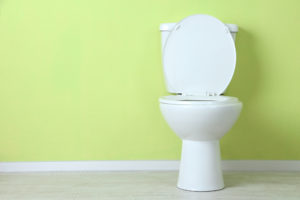 Toilet Repair & Replacement in Rochester, NY